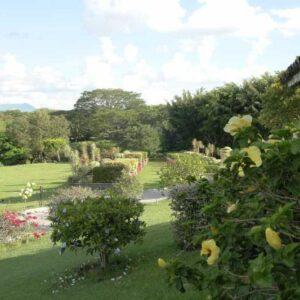 Lotes privados cementerio cartago
